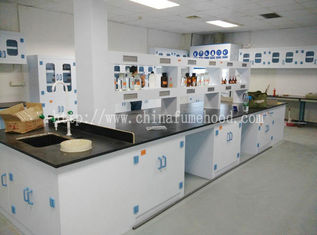 China Floor Mounted PP Lab Island Table supplier