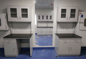 School Science Laboratory / Lab Tables Acid Proof / Lab Workbench Supplier