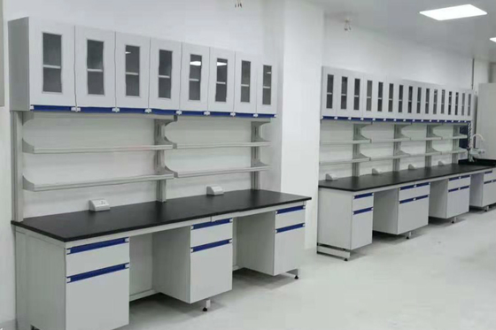 Professional Firmness Movable Lab Furniture Chemistry Resistance Acid