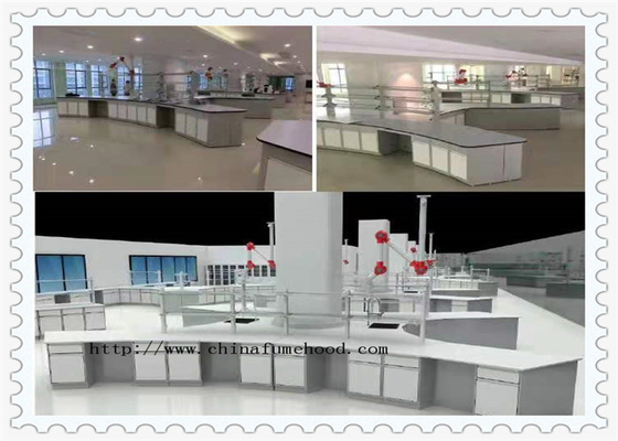 Phenolic Worktop Chemistry Lab Furniture / Steel Laboratory Furniture
