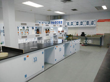 China Floor Mounted Chemistry Lab Cabinets Ploypropylene Island Table Workbenches distributor